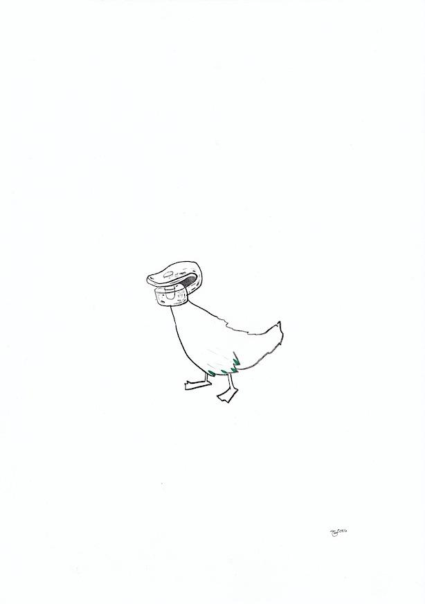 Nature (Duck 001)